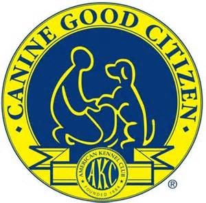 Good Citizen Dog Training Colorado